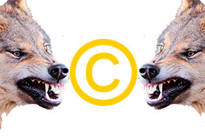 Взаимоотношения между владельцами авторских прав
