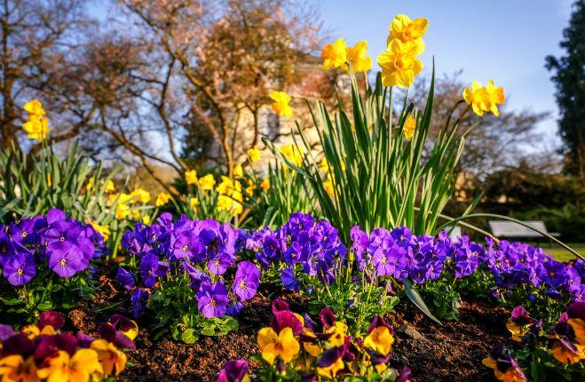 весна и торговые марки